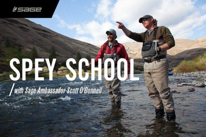 SPEY-School-2-1050x700.jpg